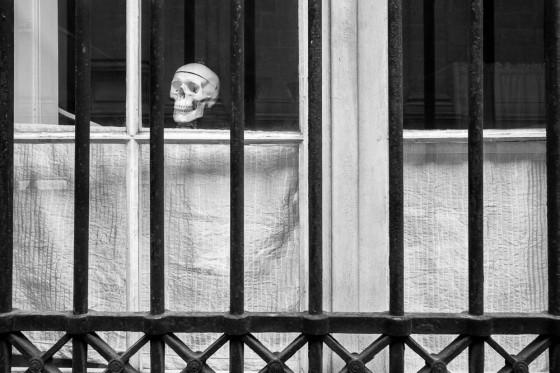 Squelette à une fenêtre.